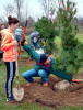 2015 Grand Ledge High School Tree Planting